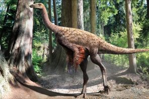 Illustration of dinosaur with feathers. | Courtesy of Discovery News.