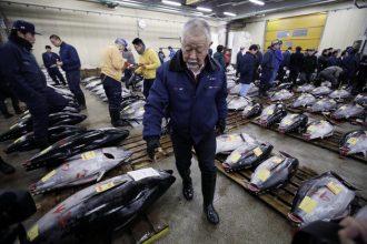 Tsukiji fish market in Tokyo, Japan. | Courtesy of The Huffington Post