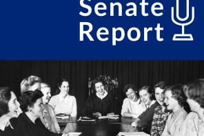 Senate Report 11/13/19